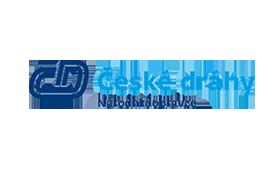 Dyko - ČD